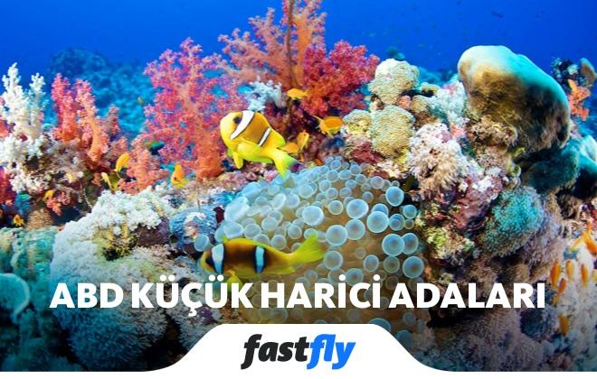 abd küçük harici adaları mercan resifleri