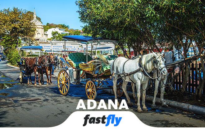 Adana da kültür sanat