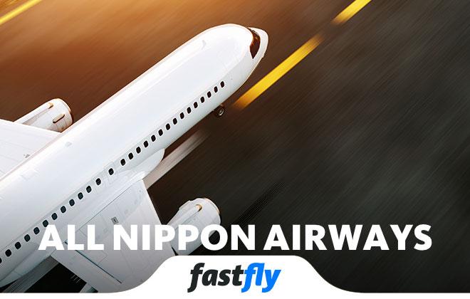 all nippon airways uçakları