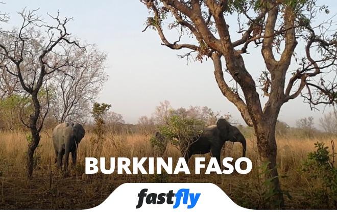 burkina faso game ranch