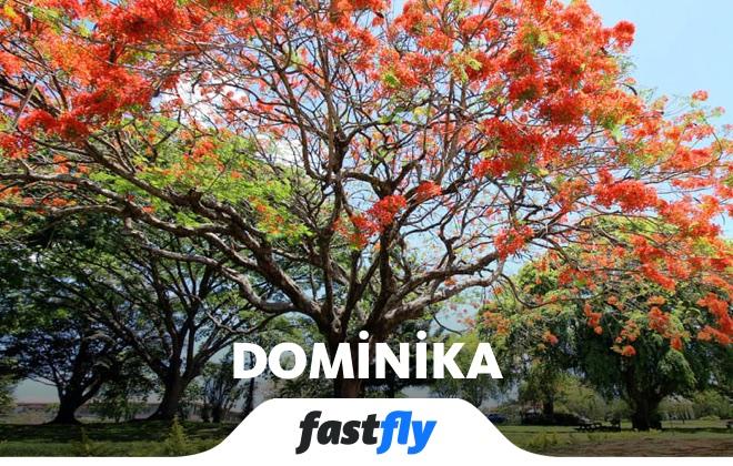Dominika Roseau Botanik Bahçeleri