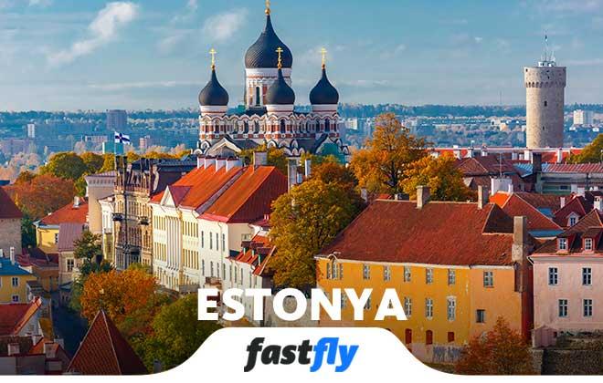 estonya temsil