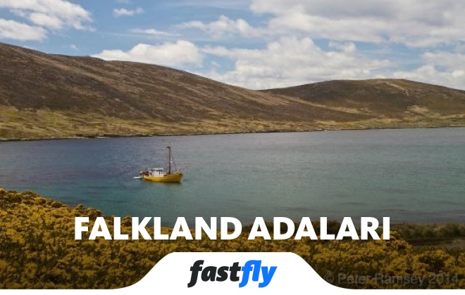 Falkland Adaları Carcass Adası