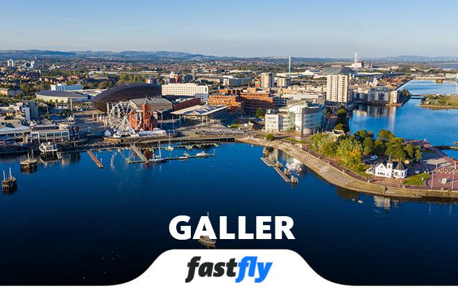 Galler Cardiff