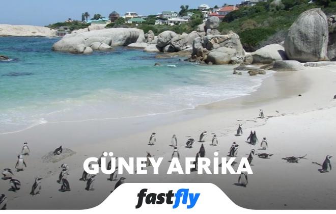 güney afrika boulders plajı