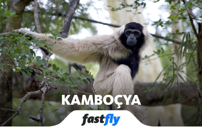 Kamboçya Botum Skor Ulusal Parkı