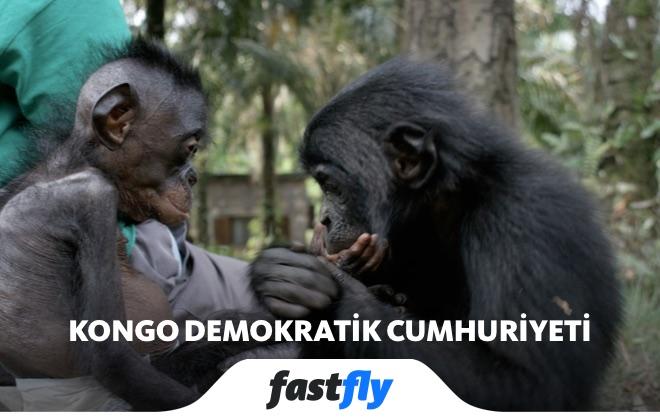 Kongo Demokratik Cumhuriyeti Lola ya Bonobo