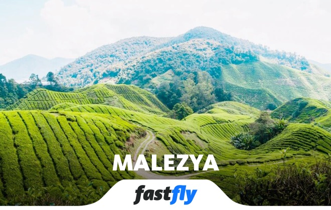 malezya cameron highlands