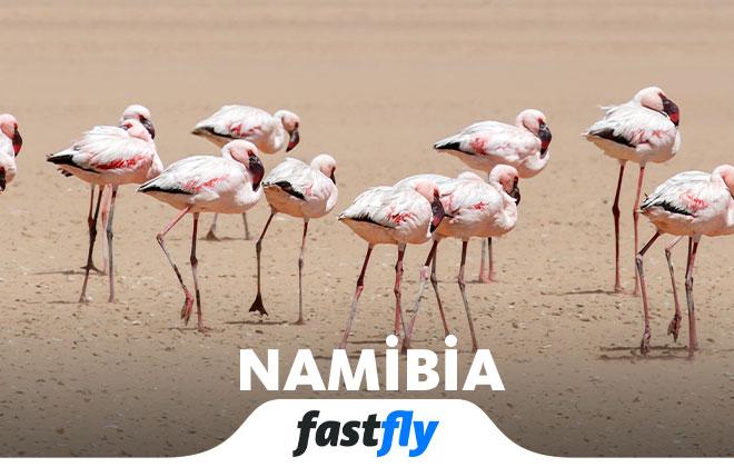 namibia tatil tur