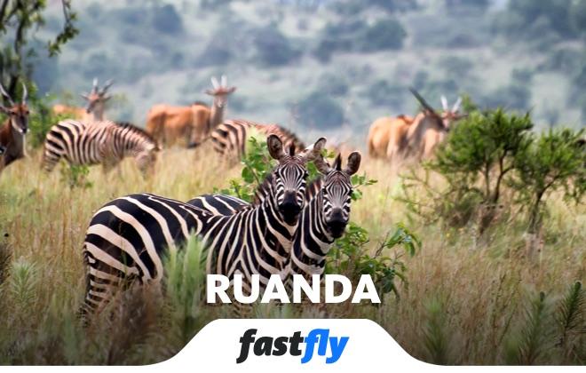 ruanda akagera ulusal parkı