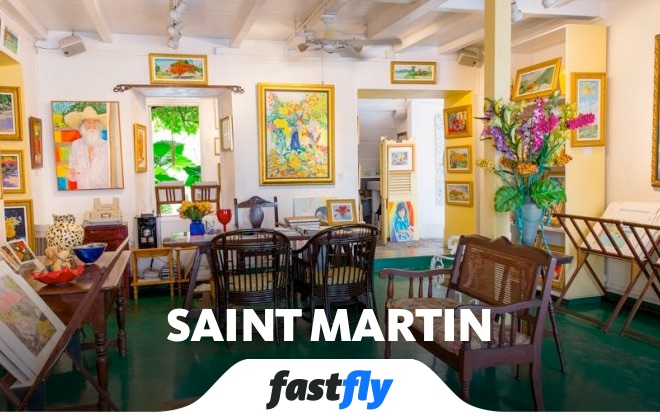 saint martin roland richardson muzesi