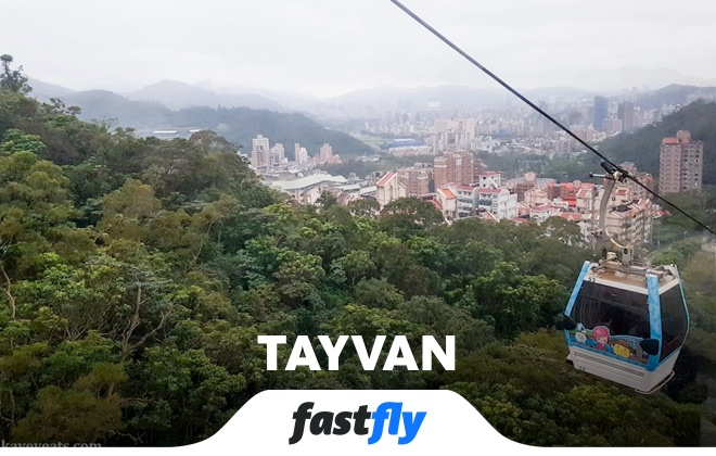 tayvan maokong
