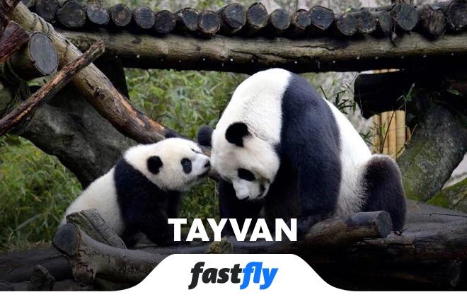 tayvan taipei zoo