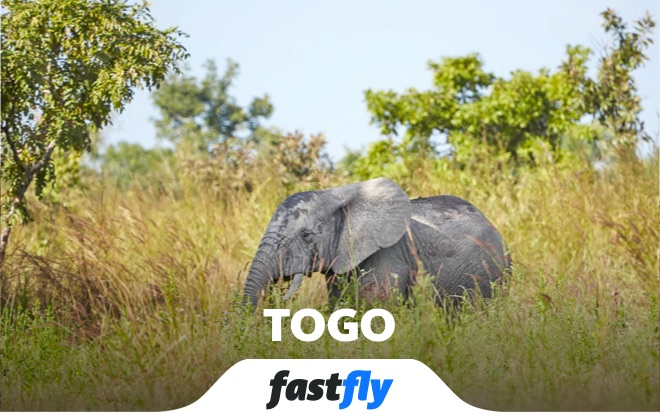 togo fazao malfakassa ulusal parkı
