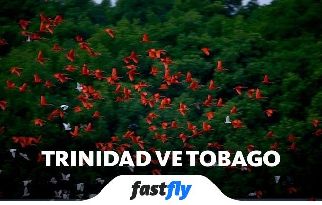 trinidad ve tobago caroni kuş cenneti
